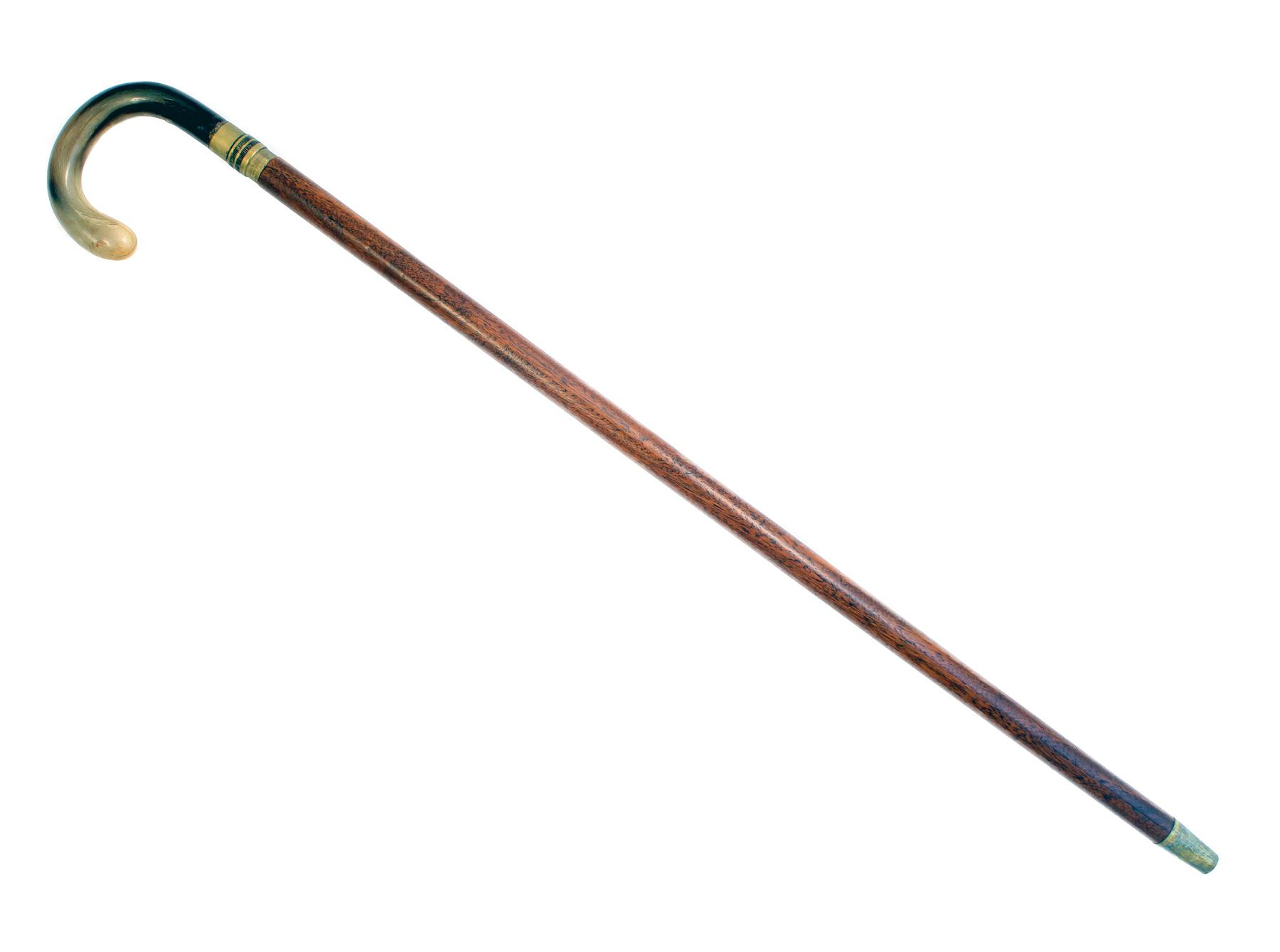 Sword Stick With Horn Handle
